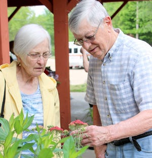 Jan and Jerry Warstler of Sturgis take a careful look at selections offered at Colon Garden Club's perennials sale. The Warstlers said they were impressed with the variety.