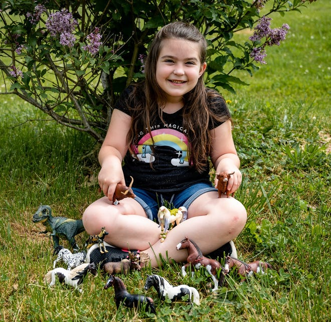 Reagan Hardy, a 7-year-old Quaker City area resident, is a finalist in the national Create Your Story contest, a partnership between the German online toy company Schleich and 4-H.