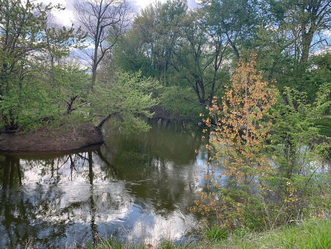 Near the bridge over the River Raisin, about one mile south of U.S. 223 on Crockett Highway, is a small floodplain, one of the few remnants of the huge uninhabitable swamps that once covered the land in southeast Lenawee County.