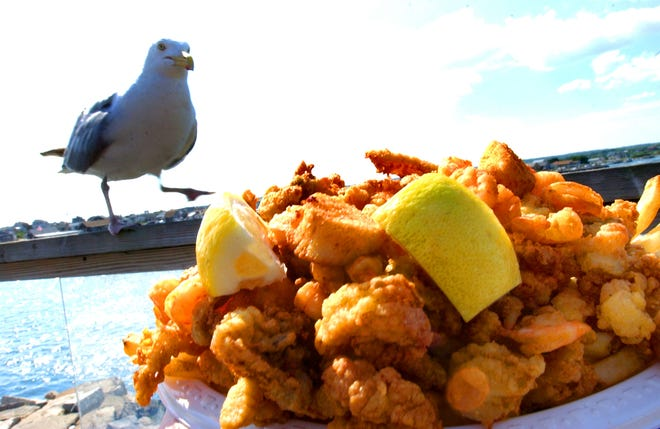 No one will take away  2021 summer joy, not even a hungry seagull. But you better protect your food there at Champlin's Seafood Deck at Point Judith.