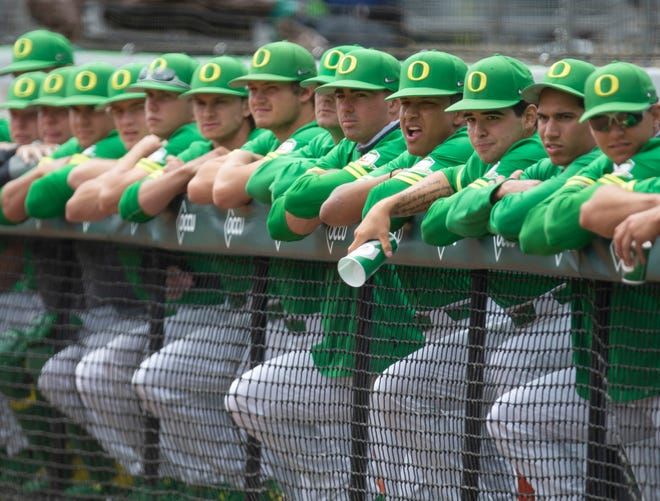 Oregon players watch the game against Stanford from the dugout at PK Park in Eugene.