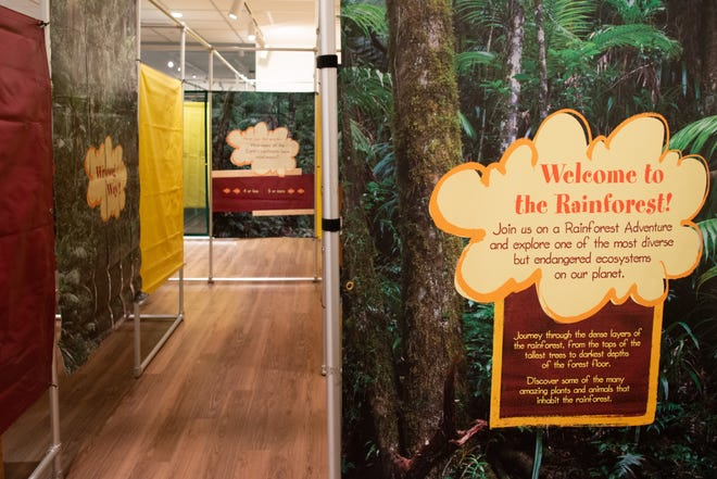 The Sabatini Gallery within the Topeka and Shawnee County Public Library has been transformed into a rainforest as part of its latest exhibit Rainforest Adventure.