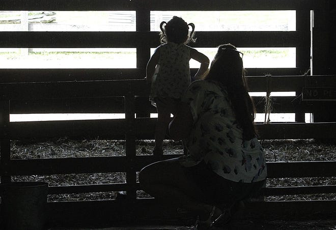 Alyvia Denton, 2, and her mother, Tiffany, look for the horses during a visit to the Slate Run Living Historical Farm on May 21.