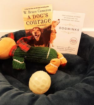 """""""A Dog's Courage"""" by W. Bruce Cameron and """"Dogwinks"""" by SQuire Rushnell and Louise DuArt."""