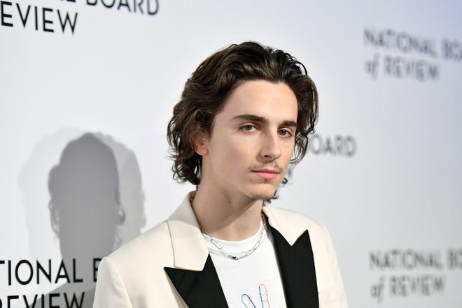Actor Timothée Chalamet attends the 2020 National Board Of Review Gala on January 08, 2020 in New York City.