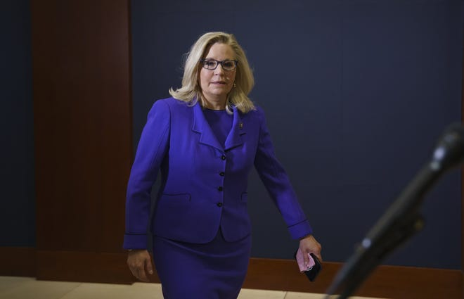 Rep. Liz Cheney, R-Wyo., was all in for most of the Trump agenda. She just wouldn't support his lies, John Young writes.
