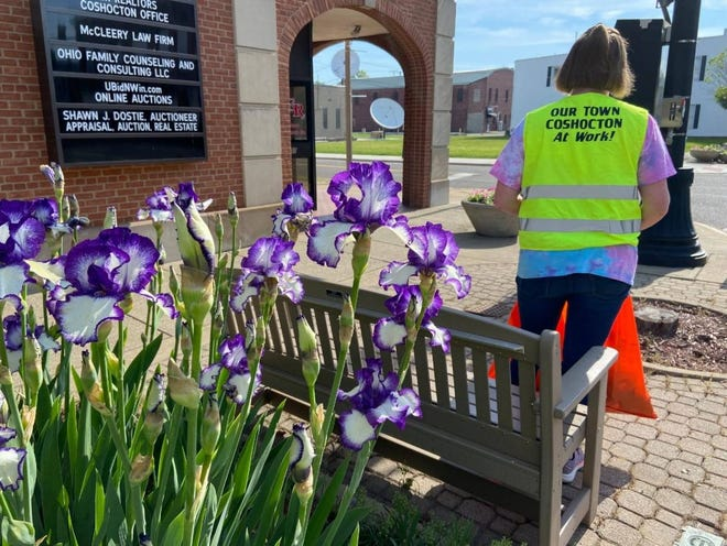 Volunteers with Our Town Coshocton recently cleaned debris and painted fire hydrants along Main Street part of its One Block at a Time campaign.