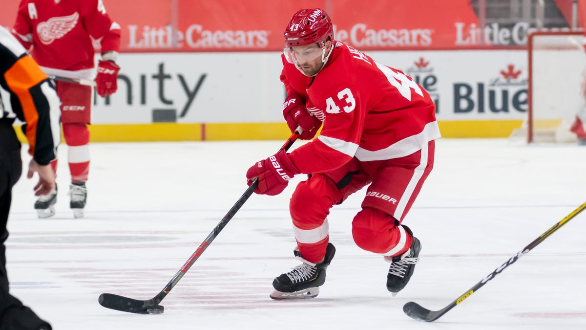 Future uncertain for three veteran Red Wings forwards 2