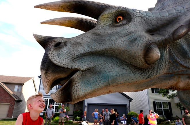 """A Hilliard family won a visit Tuesday from a life-size Triceratops from Dino Safari in a """"What Would You Do If You Had a Dinosaur"""" contest. The dinosaur was brought to the Lemaster home, center, and stayed there for two hours, when neighbor Austin Raines, 7, left, was able to get a closer look."""