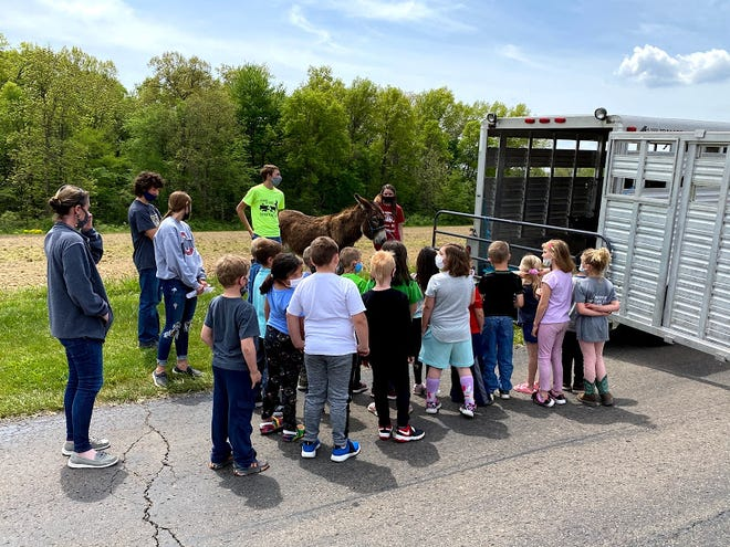 Northwester Elementary School first-graders were treated to a petting zoo by the high school FFA chapter.
