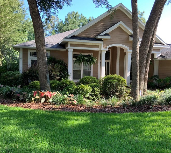 A mixture of plant shapes, textures, and colors will make your front yard more appealing.