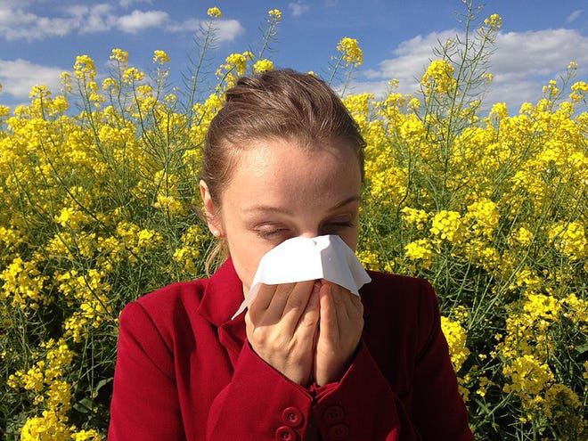 Common symptoms of allergies include sneezing, itchy, runny or blocked nose along with itchy, red or watery eyes.