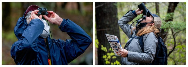 York resident Carol Donnelly, 80, left, and White Pine Executive Director  Heather Campbell search for a bird through binoculars during a bird walk at Brave Boat Headwaters Preserve in Kittery, Maine.