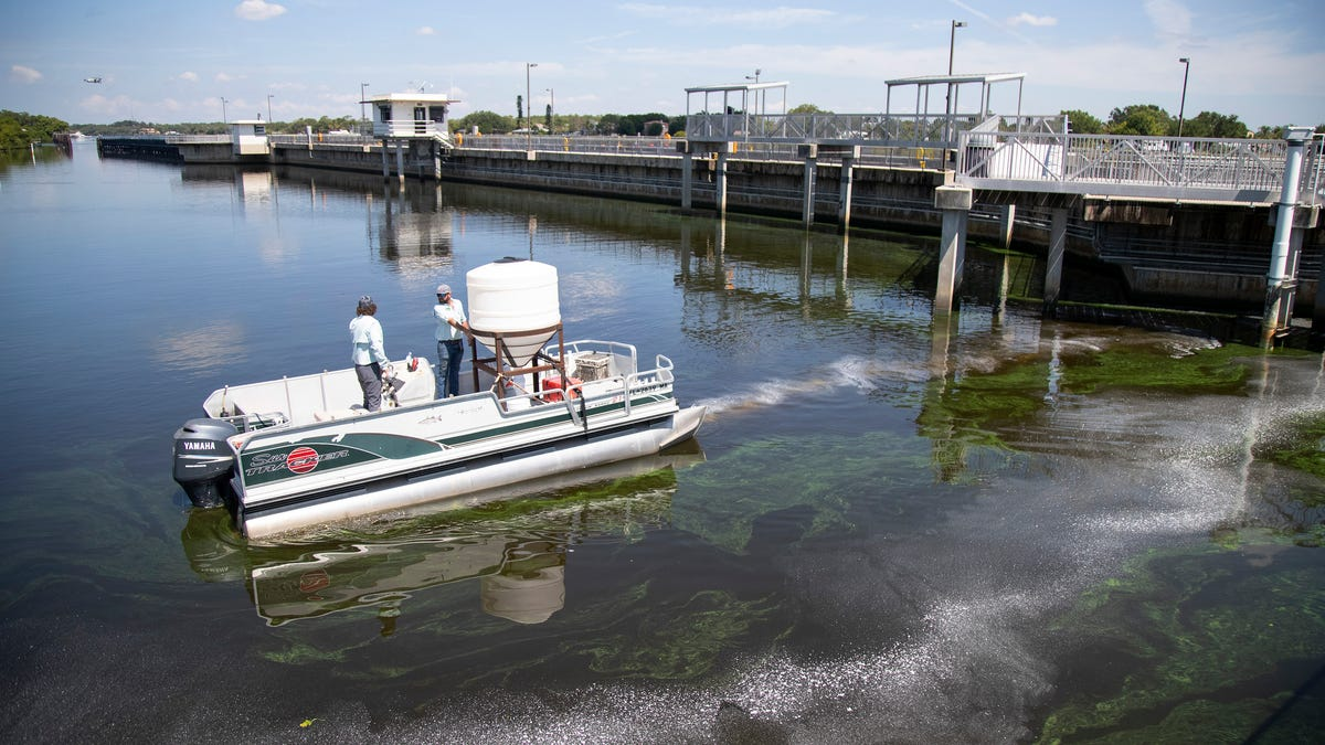 Guest opinion: Coasts unite, urge Army Corps to adopt more equitable Lake Okeechobee plan 1