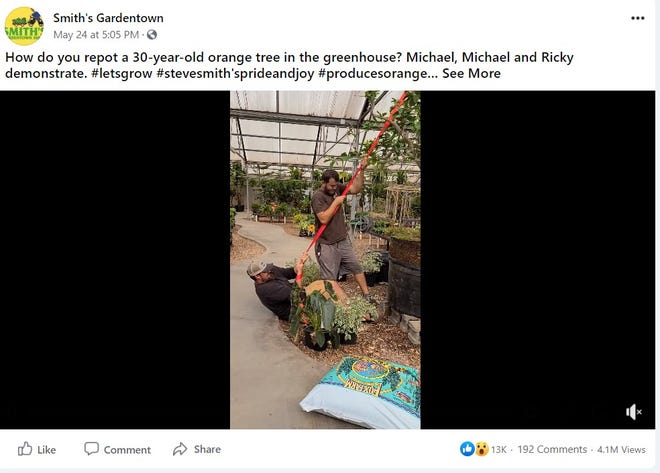 Smith's Gardentown had a surprise this week when a simple repotting demonstration got more than four million views online.