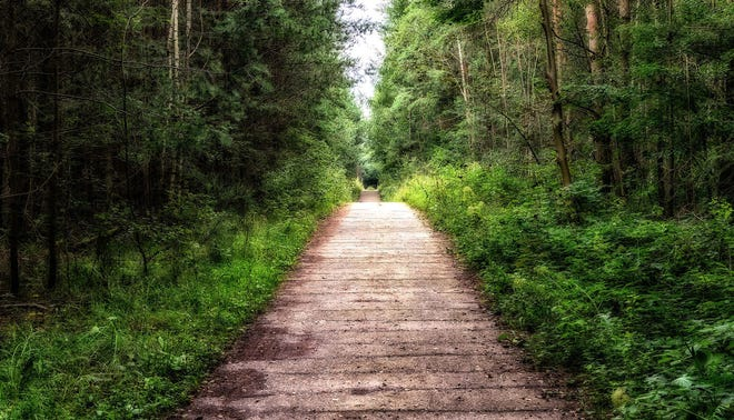 The path of making right decisions is filled with choices every step of the way. (Stock photo)