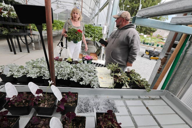 The water from the new irrigation system bubbles upward at the bottom of the frame, as Mike Tremblay helps a customer at Lawrence Family Greenhouses on Hathaway Road in New Bedford.