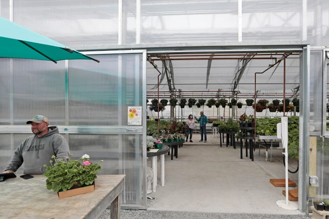 Mike Tremblay waits at the register, as customers look at the various plants for sale inside of the new greenhouse at Lawrence Family Greenhouses on Hathaway Road in New Bedford.