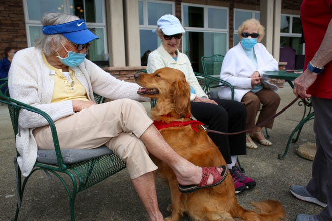 Residents at Crista Shores pet Gracie, a therapy dog who visits care facilities. Gracie did most of her training to be a therapy dog at Crista Shores, so many residents know her well.