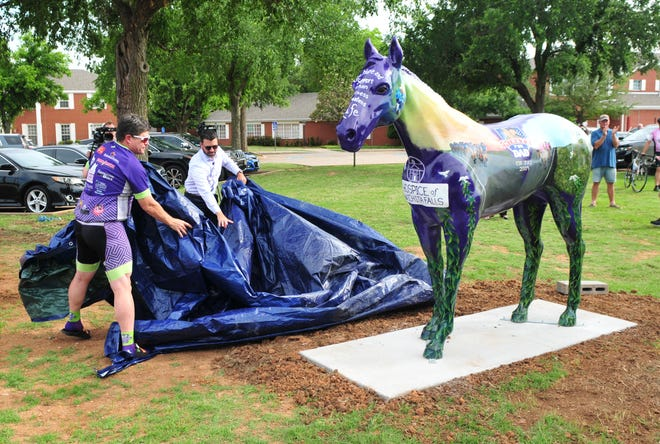 Hospice of Wichita Falls unveiled the newest member of their family Thursday.
