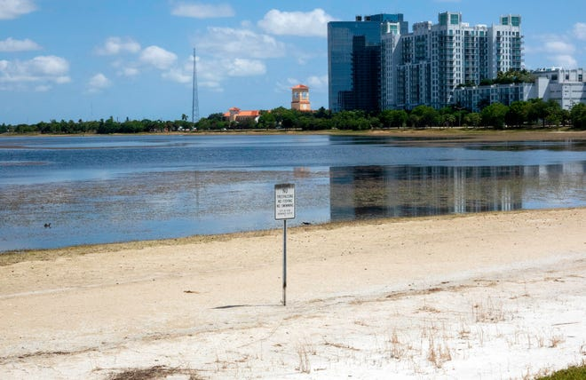 A sandy shore on Clear Lake in West Palm Beach shows the dwindling water supply as the city can't take water through the L8 canal because of algae blooms. Clear Lake is the source of water for West Palm Beach and Palm Beach.