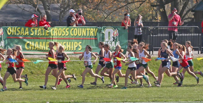 Runners race past the OHSAA banner during the Division II 2020 Cross Country State Championships at Fortress Obetz and Memorial park in Obetz, Ohio  on Saturday, Nov. 7, 2020.  [Mike Cardew/Beacon Journal]