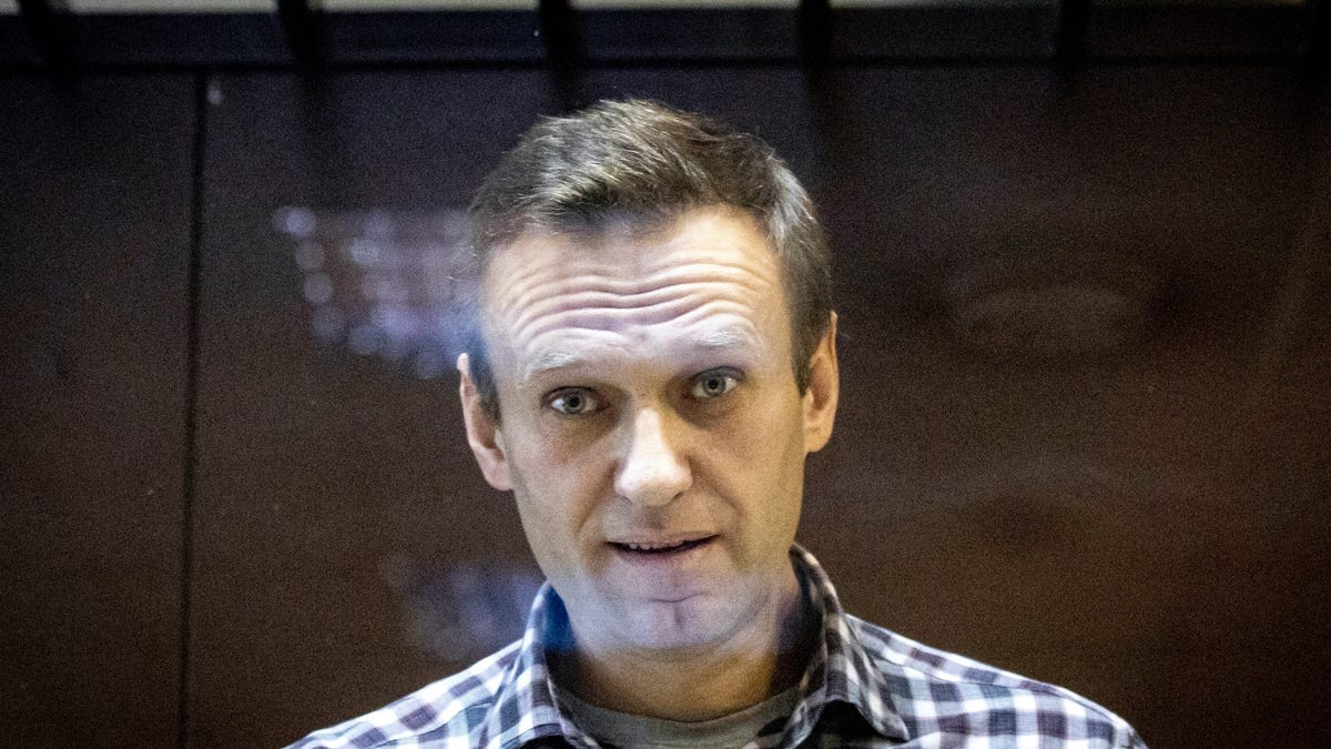 Russia's Navalny asks court to end prison security checks 3
