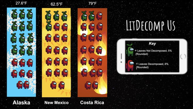 """Desert Data Jam 2021 first place project """"LitDecomp Us"""" by Emma, Jordynn and Richard from Picacho Middle School."""