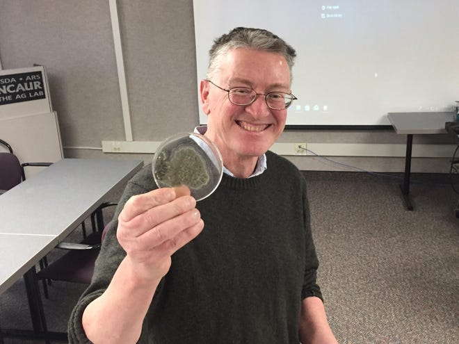 In this 2019 photo, Neil Price, a research chemist at the National Center for Agricultural Utilization Research, holds a sample of Penicillium rubens, the microbe from which penicillin is made. The General Assembly has approved designating Penicillium rubens as the official state microbe.