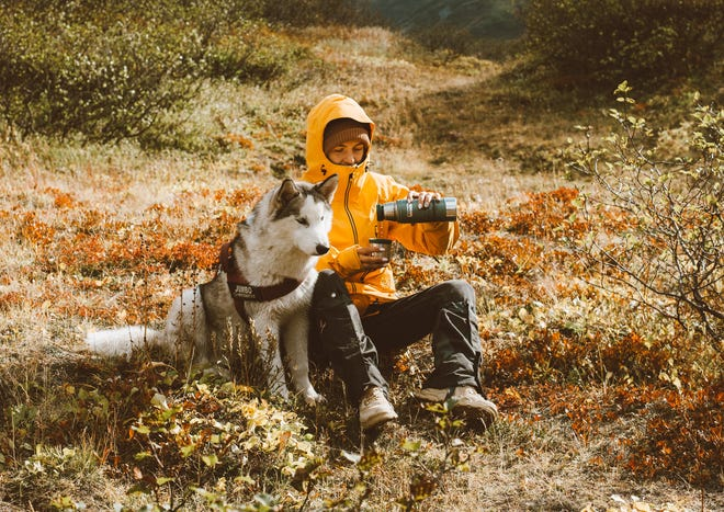 When vacationing with pets, it's important to have a first aid kit on hand, in case travelers find themselves far from a vet clinic when an accident occurs.