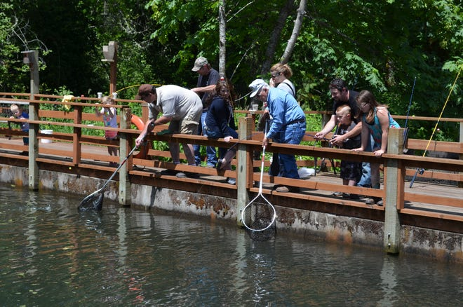 It was flying nets and squealing kids at events such as this one at Roaring River Hatchery during pre-covid Free Fishing Weekends in June.