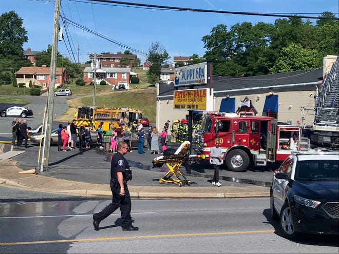 The scene outside Pets-N-Pals Tuesday morning June 1.