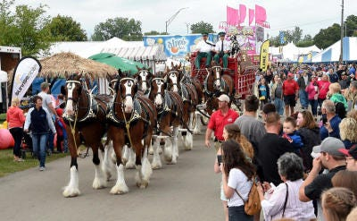 The Budweiser Clydesdales parade through a large crowd at the 2017 Monroe County Fair. The fair and numerous other events and activities in the county will be listed in a community events  calendar that will be launched this summer by the Monroe County Convention and Tourism Bureau and the Monroe County Link Plan.