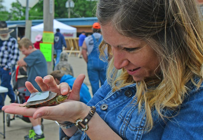 Cystal VanCoevern celebrates her Birthday with her family and over 80 turtles at the Bennington Rodeo Fun Day Turtle Race in 2015.