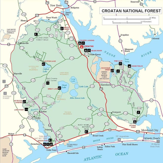 The Croatan Forest stretches 160,000 acres across North Carolina.