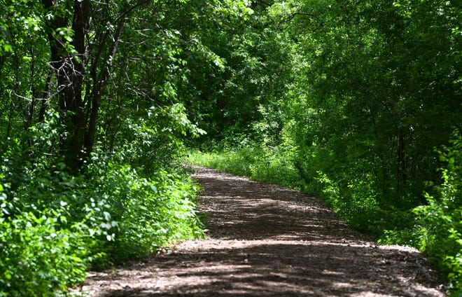 An existing trail at Sauk River Regional Park is pictured Wednesday, June 2, 2021, in Sartell. The park will feature a new mountain biking trail following approval from the Sartell City Council last week.