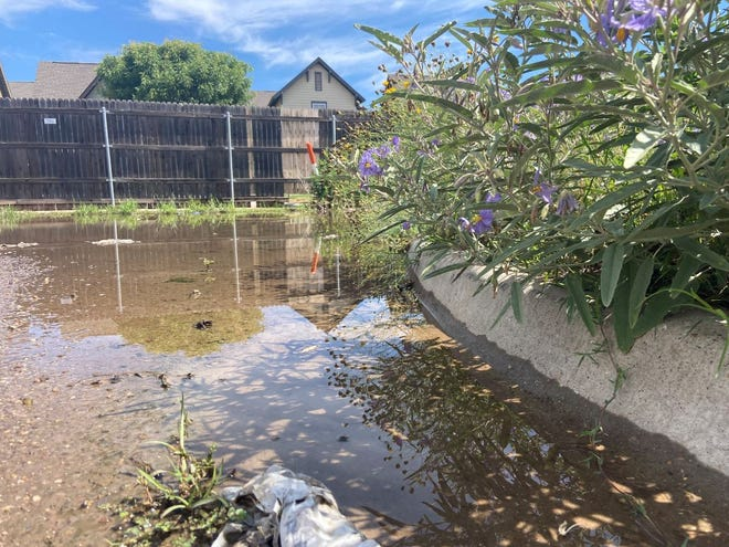 Following another evening of rainshowers, there was standing water and weeds in an alley in the Overton neighborhood Thursday morning in Lubbock.