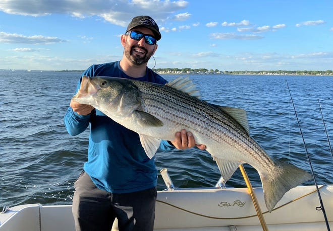 Chip Florio with a 37-inch striped bass he caught in the Providence River this week by live-lining with Atlantic menhaden while fishing with Bryan Roberts.