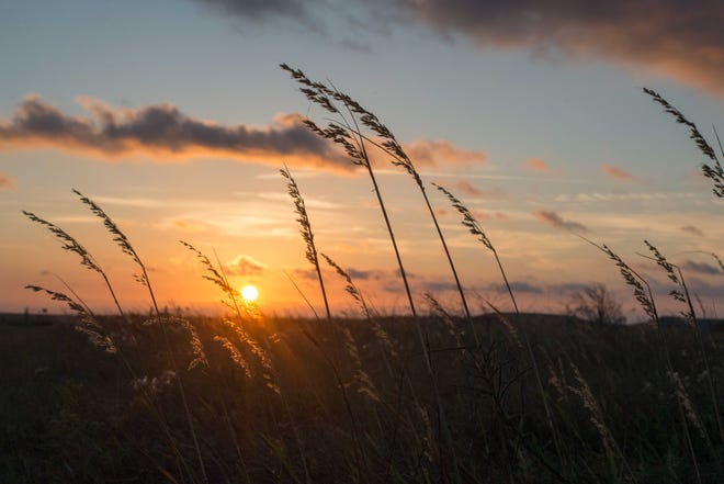 The sun rises over the Konza Praire Biological Station south of Manhattan. The 3,487-hectare preserve of native tallgrass prairie is a protected section of the Flint Hills of Kansas.