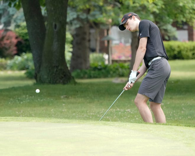 Tecumseh's David Clarke chips onto the green at Tecumseh Golf Club during Thursday's Division 2 regional meet.