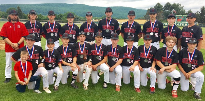 Meet the 2021 Honesdale varsity baseball team, silver medalists of the District 2 Class 4A tournament. The Hornets lost to Wyoming Area in Thursday's championship game. Pictured are (kneeling from left): Blake Griffis, Max Mickel, Jack Eisele, Peter Modrovsky, Paul Meagher, Sam Jones, Jake Mundy, Grant Tonkin, Bryce Dressler, Zach Branning, Austin Nedwetzky. Standing are: Coach Griffis, Garrett Tonkin, Joseph Curreri, Dallas Gombita, Timmy Jackson, Jimmy Rodda, Trent Gombita, Nate Greene, Nathan Hugaboom, Coach Miller.