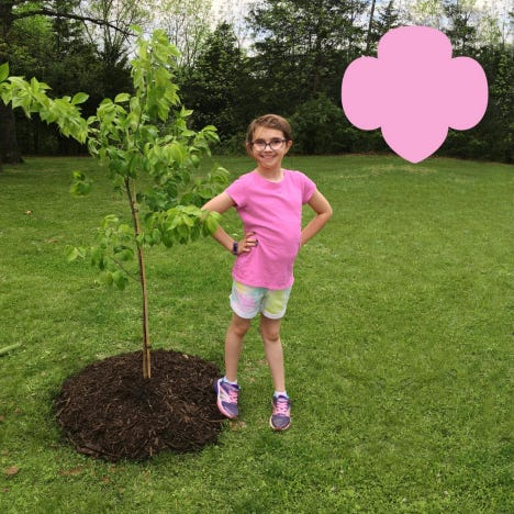 Jamie from Troop 71983 posing next to the tree she planted.