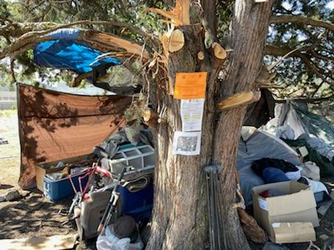 A photo of a homeless camp off of Campus Drive in Yreka.