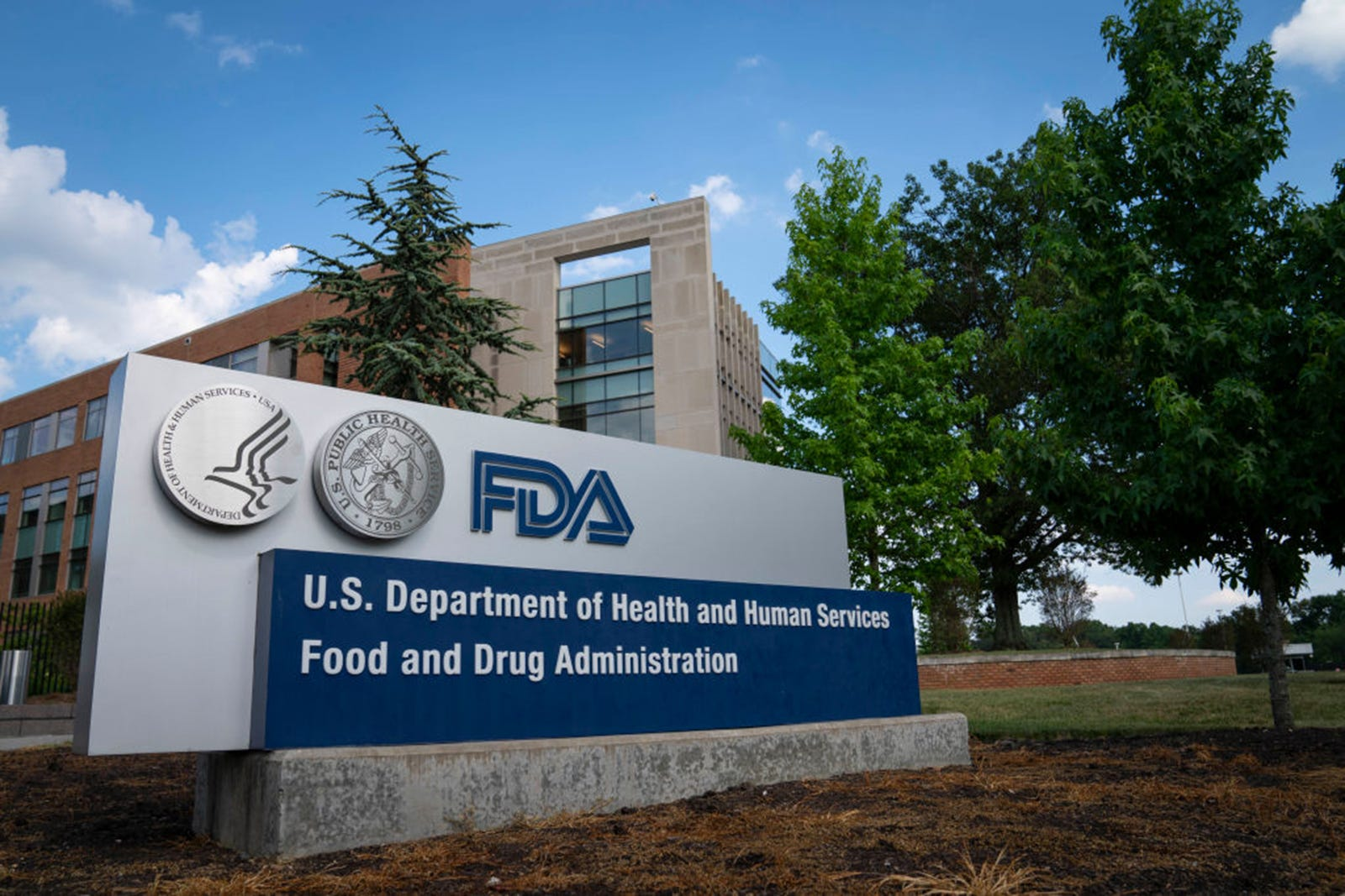 FDA weighs approval of a lucrative Alzheimer's drug but benefits are iffy 2