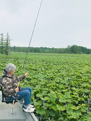 The lily pads at Reelfoot Lake is where you'll find Cody Rodriquez fishing in the spring. The thicker the pads the most holes he'll find to catch bluegill.