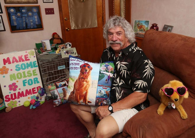 John Yarsa is surrounded by mementos in his home of his Golden Retriever Summer from the sunglasses she was famous for wearing to all of the agility awards she had won Saturday, June 5, 2021 in Barberton, Ohio. Summer who passed away in April just shy of her 16th birthday, was a local dog celebrity and she will be honored with a pet food drive and a ceremony by Barberton City Council.