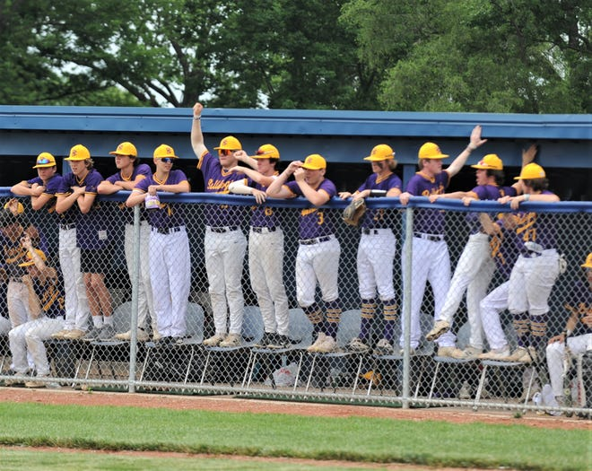 The Bloom-Carroll bench celebrates during Friday's 3-2 win against Cambridge in the Division II regional semifinal at Teays Valley High School.