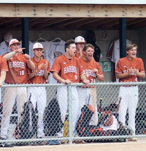 Harbor Springs players celebrate in their home dugout Saturday, a day that ended in celebration of a Division 3 baseball district championship as well.
