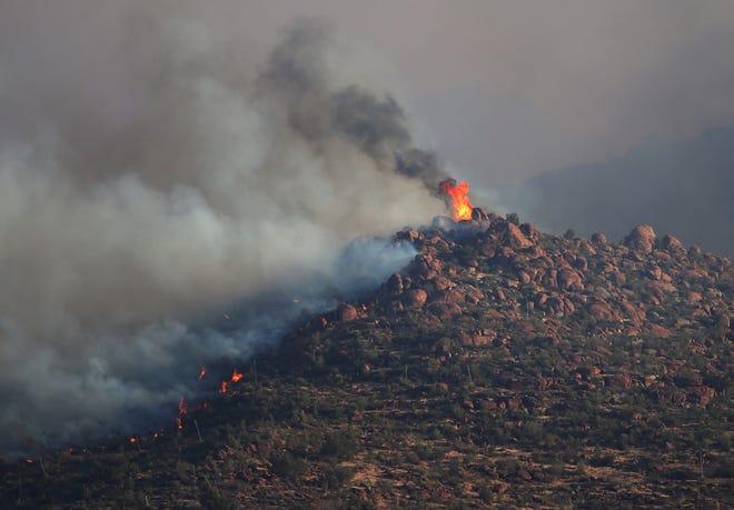 Un incendio de telégrafo arde en el Bosque Nacional de Tonto cerca de Superior, Arizona, el 5 de junio de 2021.