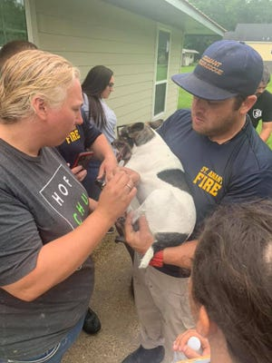 Volunteer firefighters rescued a family's pet dog after its paw became stuck in a bathtub drain.